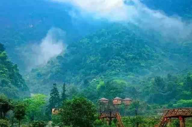 打卡清远这5家网红森林民宿,静谧的可以听雨喝茶看书丨南方民宿